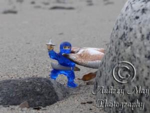 Blue Ninja In Trouble