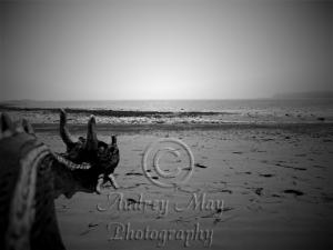 Daemon Overlooking The Sea 2