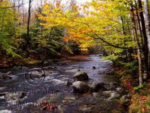 Fall Colors at Screw Auger Falls