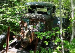 Old Truck 5 (Full view)