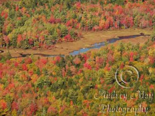 Fall Colors on Tunk 2