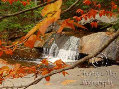 Screw Auger Falls in Autumn